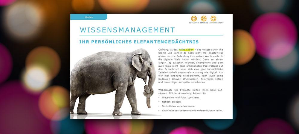 Wissensmanagement: Ihr persönliches Elefantengedächtnis